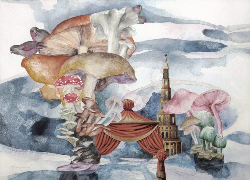 Mushroom-Islands-lr
