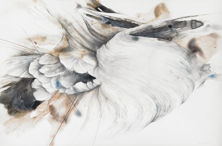 Untitled-Terrain